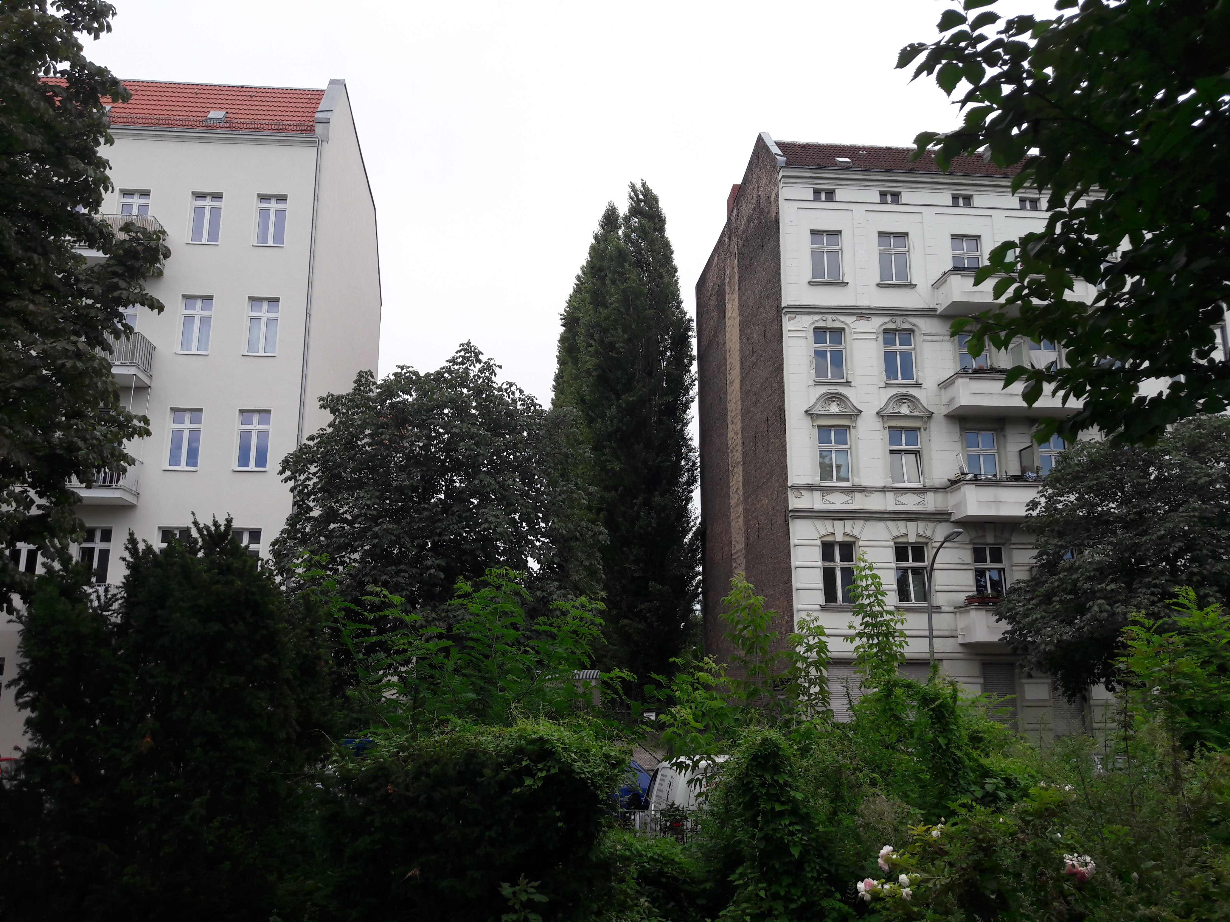 Gruentaler-Strasse-Bauluecke.jpg